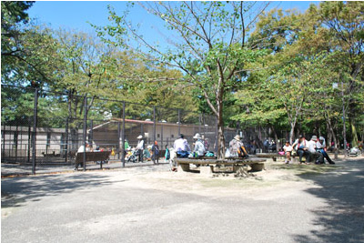 小動物園1