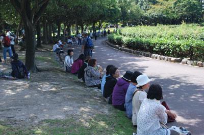 秋葉公園2