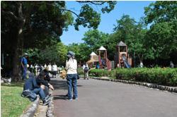 秋葉公園3
