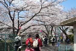 堀尾跡公園~曽本小公園