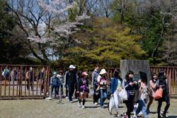 植物園を抜け、一般公園に入ります。