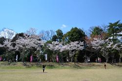 愛知県森林公園 一般公園