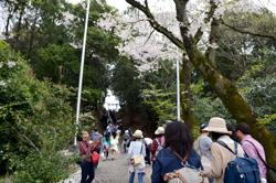 階段をのぼり、洲原神社の本殿へ。
