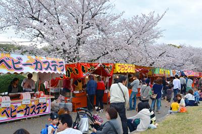 洲原公園では桜まつりが開催され、出店とたくさんの人でにぎわっていました。