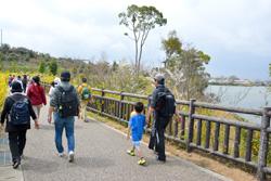 岩ヶ池の景色を楽しみながら歩きます。