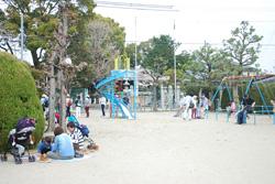 井上児童遊園で昼食を楽しむ家族もいらっしゃいました。