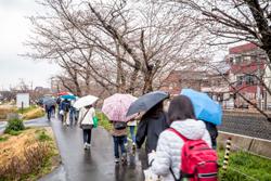 伊賀八幡宮を出て、伊賀川沿いを下っていきます。