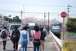 川沿いの桜が見えてきました。もうすぐ堀尾跡公園です。